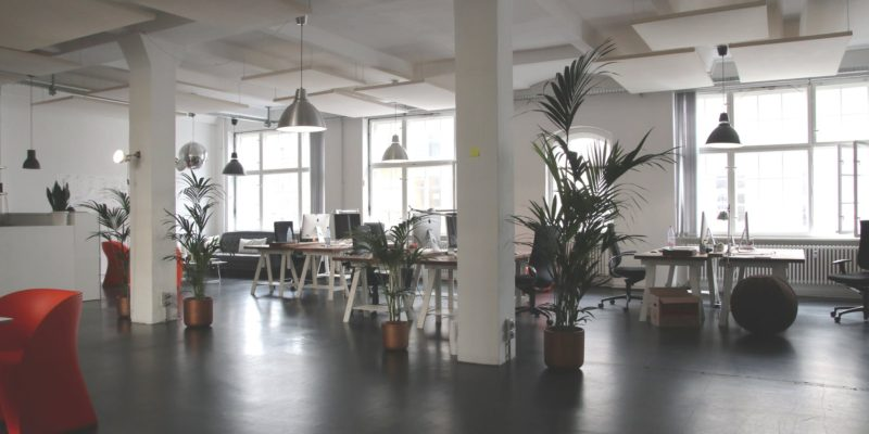 Design Features that Help Increase Productivity in the Workplace